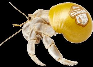 Krabooz Coomaras
